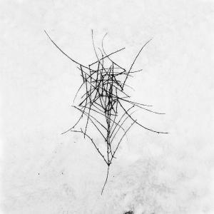 DEAD RAVEN CHOIR - SCHMERZENSGEWALT - CD