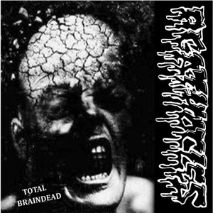 DISORDER/AGATHOCLES - SPLIT - CD