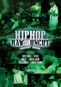 VARIOUS - HIP HOP RAW & UNCUT CONCERT SERIES: PLATINUM EDITN - DVD x 2